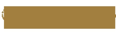 Missrc Logo
